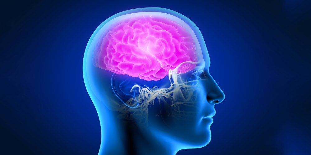 The brain infection - causes, and types