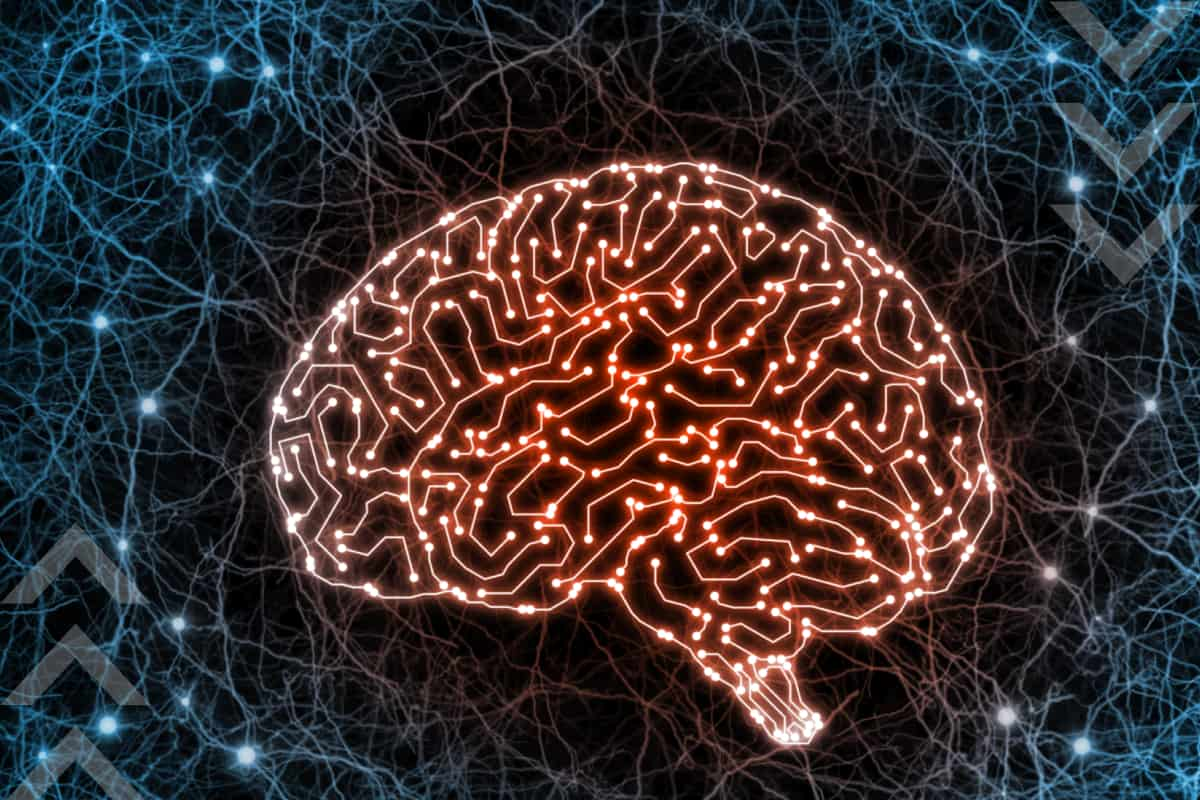 What Is the Difference Between Neurological and Psychiatric Disorders?