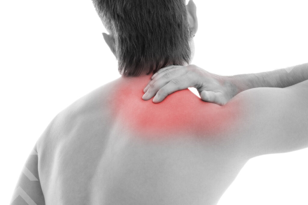 Shoulder and scapular pain all information about it